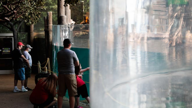 Guests observe the manatee habitat at the Columbus Zoo and Aquarium on Friday, the day the zoo was allowed to reopen.