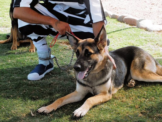 Inmate Felipe Lerma and Quincy wait for training instructions. Lerma is among several inmates participating in the PAWS training program.