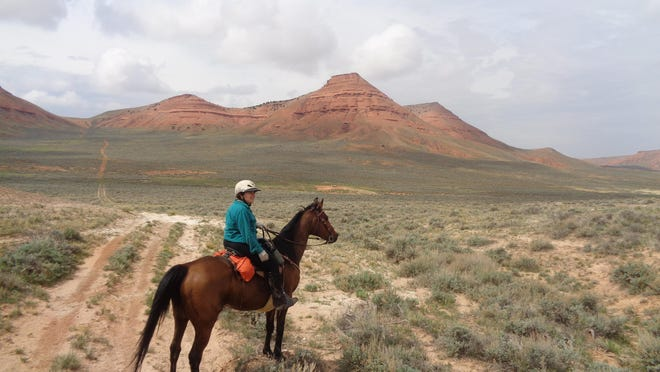 Vonnie Brown pauses on the trail to take in the scenery. Endurance riders often get to see places that the average person does not have access to.