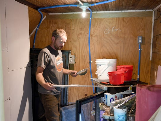 Michael Rayburn puts harvested tomato seeds into a