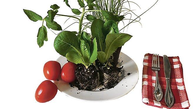 Grow a Salad.