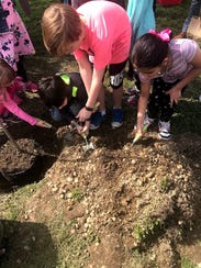 Ellison School students planted a Red Maple tree to