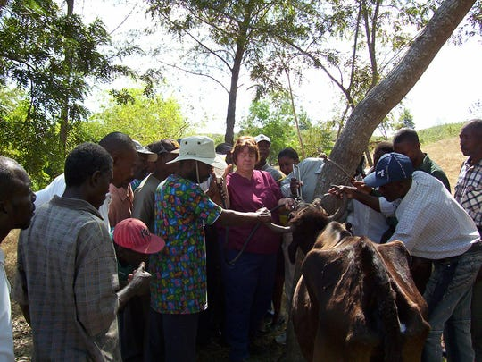 Dr. Lee Ann Fosdick, middle, teaches veterinary agents in the Mirebalais area in Haiti in 2007.