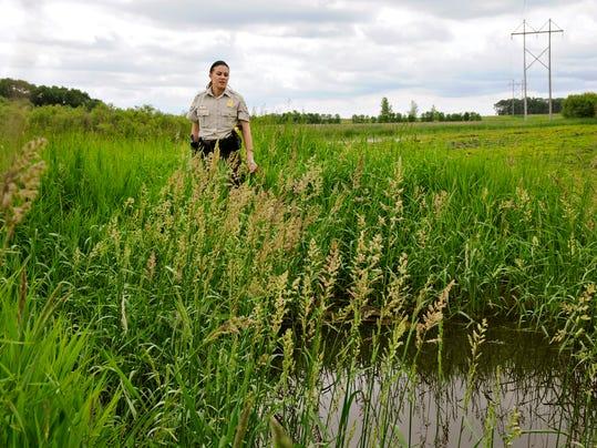 STC 0622 Wetland Violations 1.jpg
