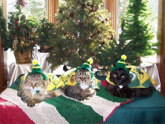 Colleen and James Sternitzky dress their cats, Kitzu, Kiki and Hoshi, up for their Christmas card each year. Colleen made their outfits, and James used Photoshop to make it look like they all posed together.