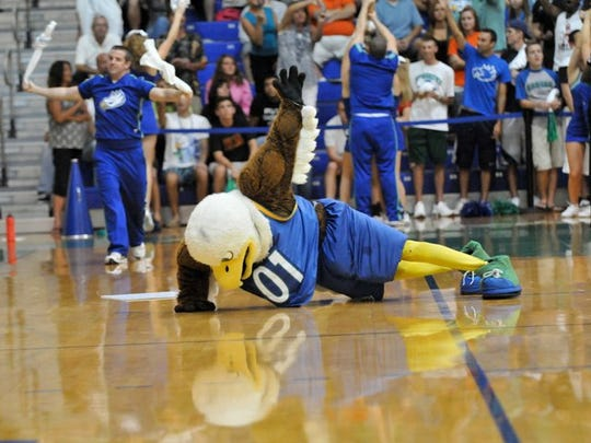 Tyler Cole performs one-armed push-ups as Azul the Eagle during a Florida Gulf Coast University men's basketball game.