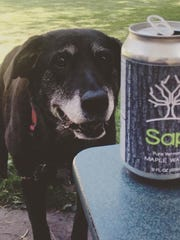 Sap! is posting photos on social media to create a buzz around their new drink made from the sap of maple trees.