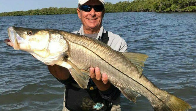 Alan Angert, of Port St. Lucie, caught and released this 41-inch snook while fishing in water barely thigh deep in the Indian River Lagoon Friday.