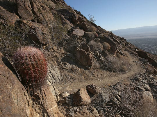 The Skyline Trail winds along the mountainside through the San Jacinto wilderness.