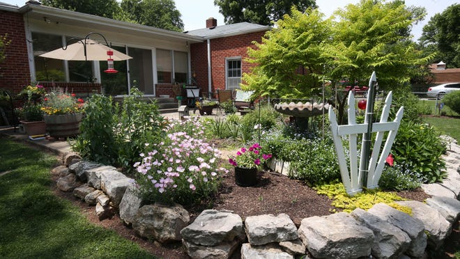Mackie and Steve's gardens are awash with color and variations in textures and shapes. Their gardens are open to the public as part of the 20th anniversary Springfield Watergarden Society garden tour.