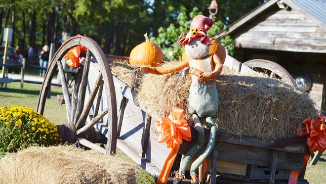 Scarecrows, pumpkins, and ribbons are scattered around Mike's Farm. Mike's Farm, located in Beulaville, features an array of fall activities including a hayride, pumpkin patch, and fall themed goodies.