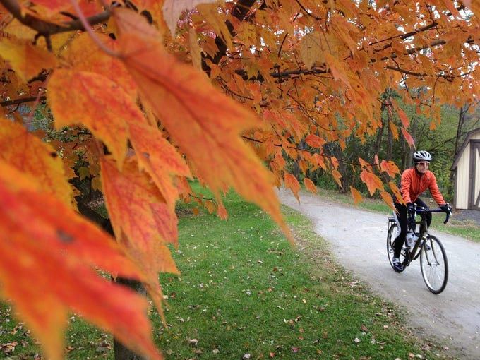 Great Allegheny Passage rail-trail beckons bicyclists Trees along the Great Allegheny Passage, (GAP) rail-trail  near Boston, Pa., are spectacular in mid October.