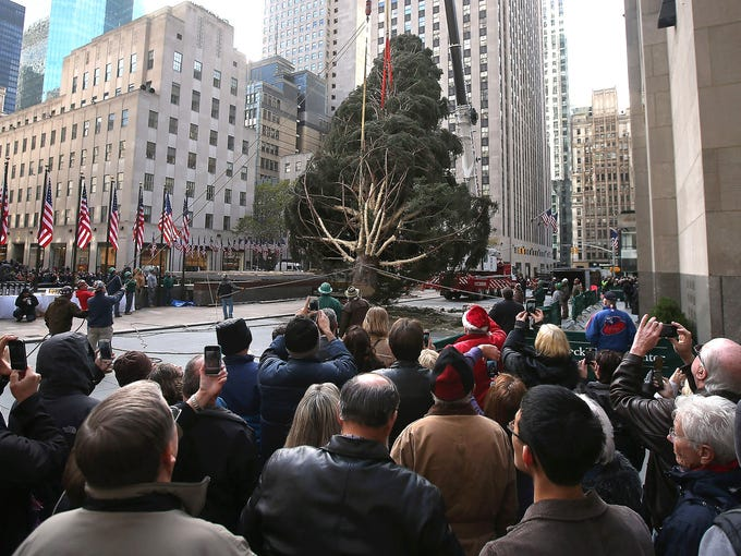 People watch as workers raise the Rockefeller Center Christmas tree on Nov. 14 in New York City. The tree, an 80-year old Norway Spruce, was donated by Joe Balku of Flanders, N.J.
