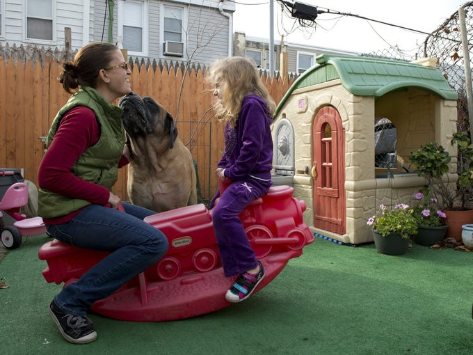 "The Environmental Protection Agency held meetings in Philadelphia this year to alert residents living around the former John T. Lewis-National Lead-Anzon factory site that tests have found potentially dangerous levels of lead in some residential yards. Christina DiPietro-Sokol covered the family's backyard in artificial turf to keep daughter Amelia and their dog, Hobbes, from coming into contact with the dirt. Estimates to cement over it were in the thousands of dollars, DiPietro-Sokol said. ""We have two kids in Catholic school. We can't do that,"" she said."