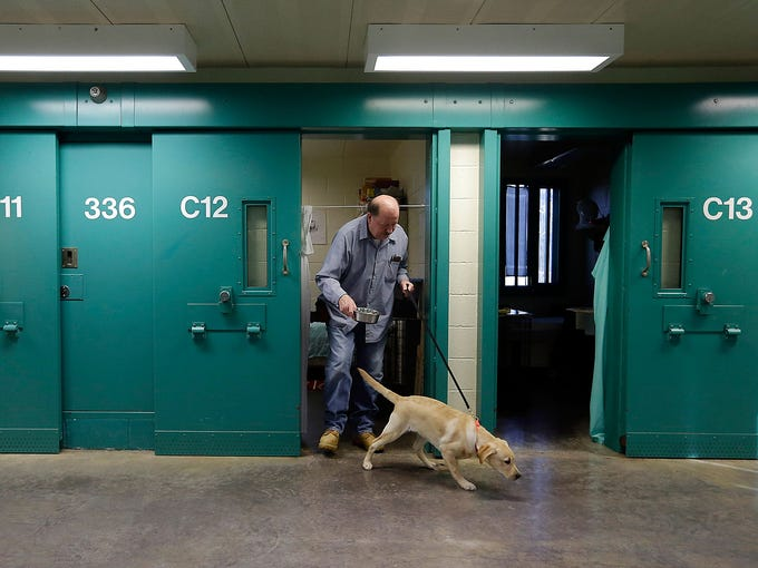 Inmate John Barba leaves his cell with Dill, a veteran assistance dog in training, on Nov. 26 at Western Correctional Institution in Cresaptown, Md. Dill is one of three dogs assigned to inmates at the maximum-security prison for basic training as service dogs for disabled military veterans.