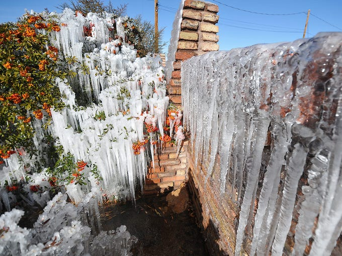 Icicles cling to bushes and a brick wall as water from a home sprinkler system freezes on Jan. 14 in Hesperia, Calif.