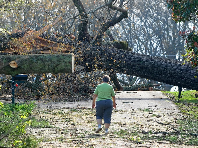 Barbara Baic walks past trees toppled by a possible tornado on April 12 in Madisonville, Tenn.