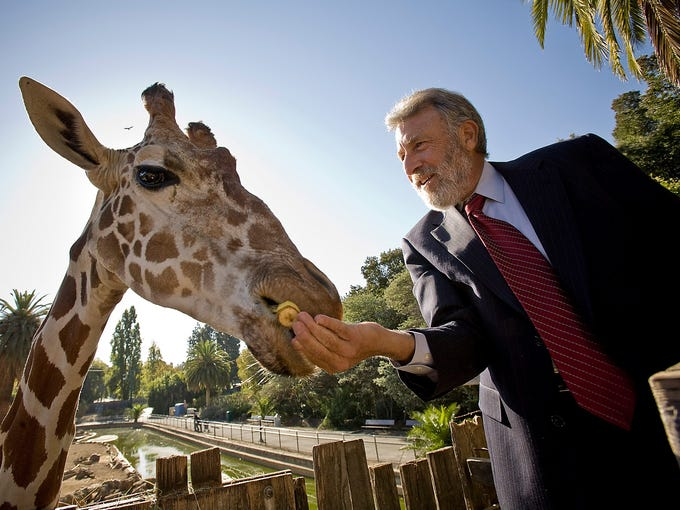 Men's Wearhouse CEO George Zimmer feeds a giraffe named 'Benghazi' at the Oakland Zoo on Oct. 14, 2008, in Oakland, Calif. Zimmer, the founder, chairman and public face of the discount apparel chain, has been terminated by the company, a company statement said June 19, 2013.