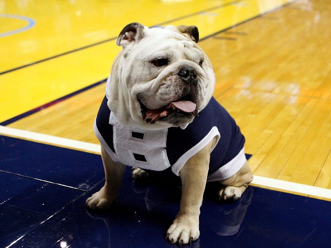 The college basketball world got a dose of sad news when it was announced that recently retired Butler mascot Blue II is battling heart disease. The lovable English bulldog and social media star was a mainstay at Butler for nine years before his retirement in 2013.