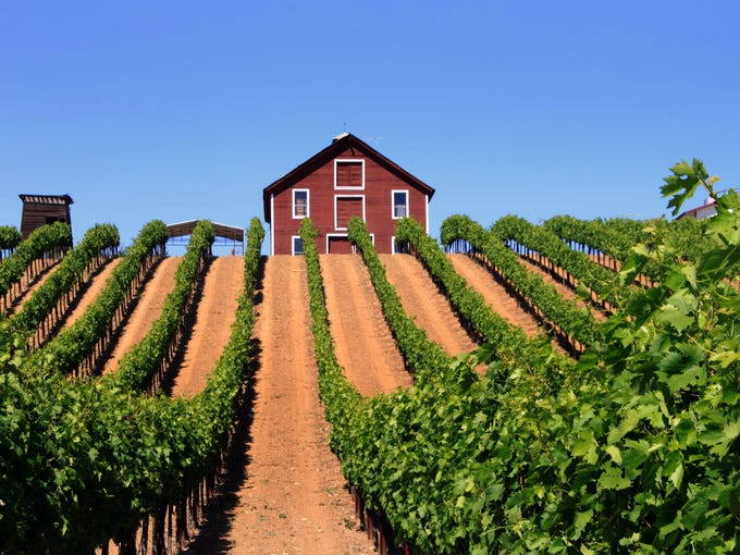 A world of adventure and beauty awaits the traveler who is looking for activities beyond wine tasting. Grab your camera and explore the many back roads of the three valleys that make up the region's Wine Road--Alexander, Dry Creek, and Russian River. There you will find small family vineyards, quaint country stores, down-home eateries, and plenty of photo opportunities.