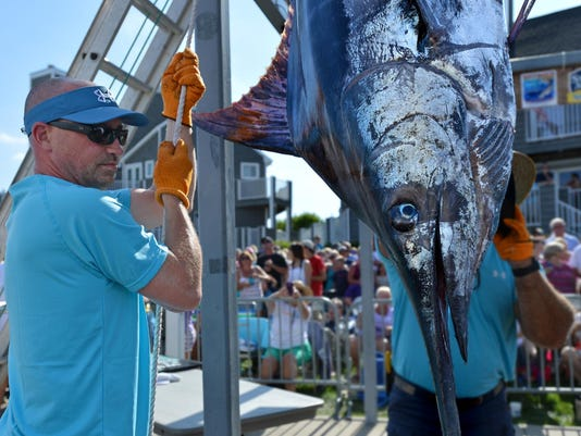 sby 0806 White Marlin Monday 1554