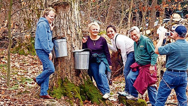 The process that takes 40 gallons of sap to make one gallon of syrup, from tapping trees, boiling the sap for 12 or more hours, and then tasting the resulting maple syrup and candies, draws thousands of visitors to Malabar Farm State Park.