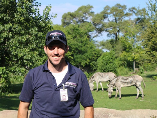 Brian Manfre, a Westland resident and Detroit Zoo mammal supervisor, stands near the zebra exhibit.
