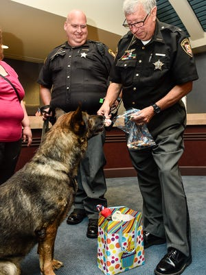 Marion County Sheriff Tim Bailey gives the now retired K-9 unit 'Sig' a treat following a retirement ceremony they had for him at the Marion County Building on Thursday morning.