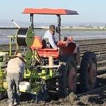 ACLU: informe estatal de pesticidas no analiza suficientemente los riesgos para los trabajadores del campo