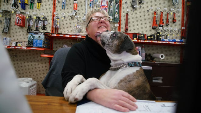 Sales representative Carolyn Goodman, at Belair Road Supply Co., gets a kiss from her boxer ,Rocky, who gets to come to work with her everyday.