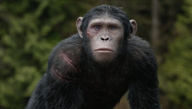 Blue Eyes (played by Nick Thurston), the son of Caesar (played by Andy Serkis), makes his debut in 'Dawn'