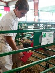 Multiple award winner Keagan Stewart tries to feed