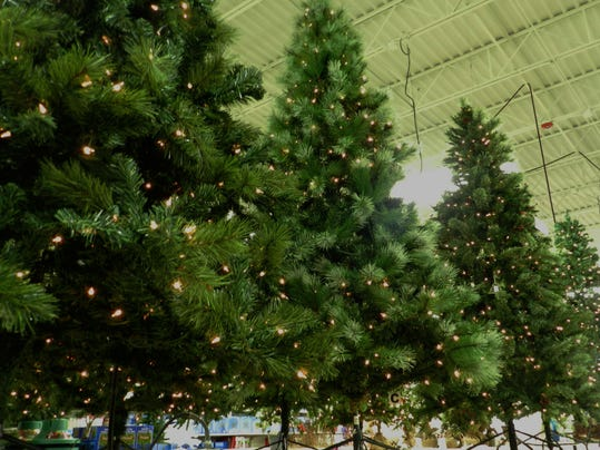dejanaephillips_christmastree_1.JPG