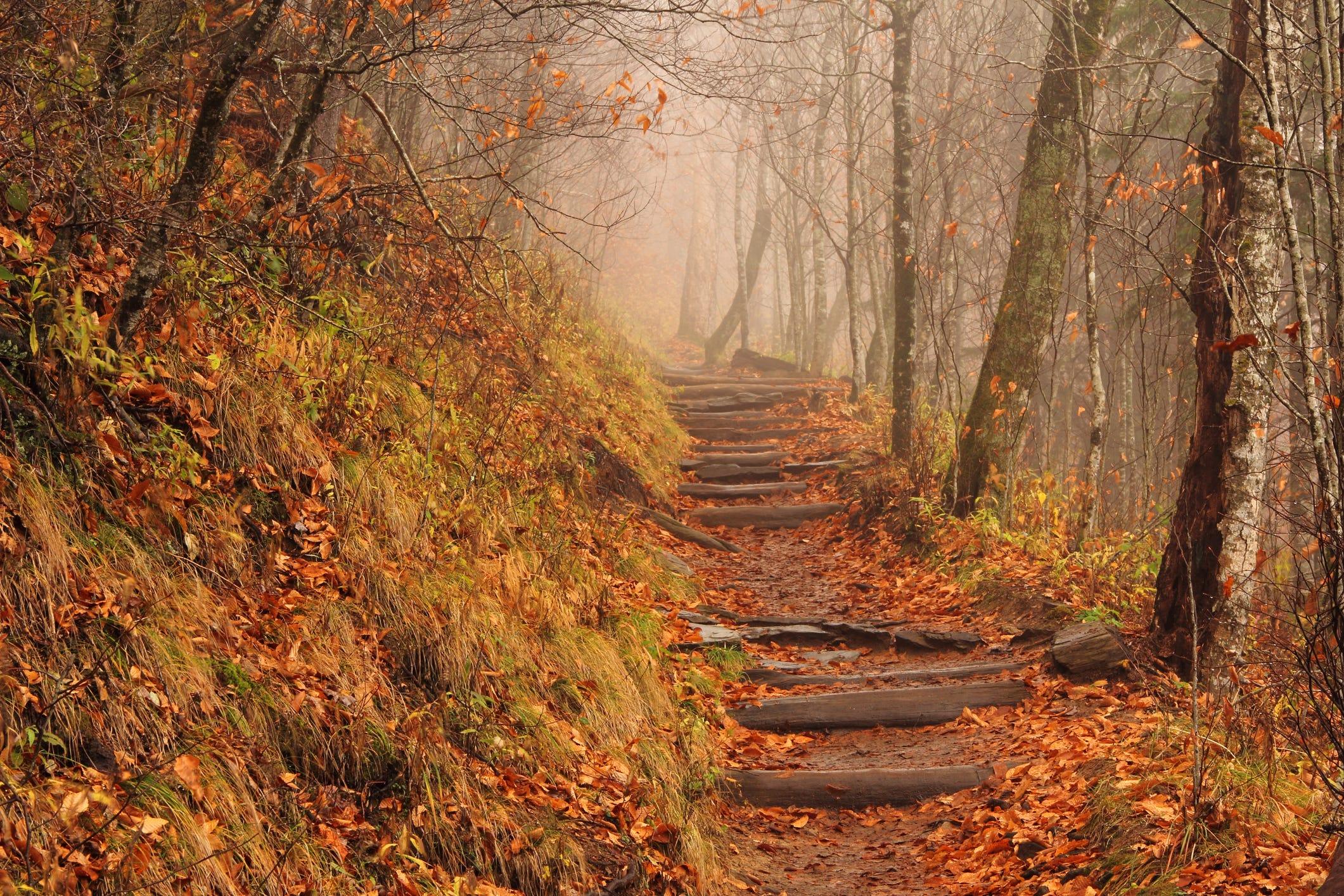 Appalacian trail naked day