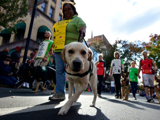 The Loving Eyes 4H Seeing Eye Puppy club attends the 66th York City Halloween Parade, Sunday, Oct. 25, 2015.