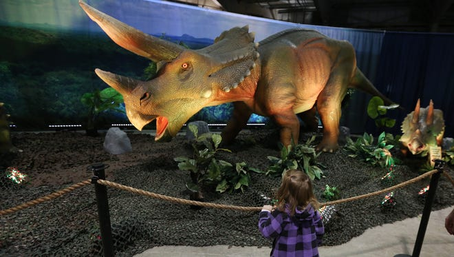Bella Tracy, 2, gets an up close look at a Triceratops at the Discover the Dinosaurs Unleashed exhibit on Sunday, Nov. 20, 2016, at the Oregon State Fairgrounds.