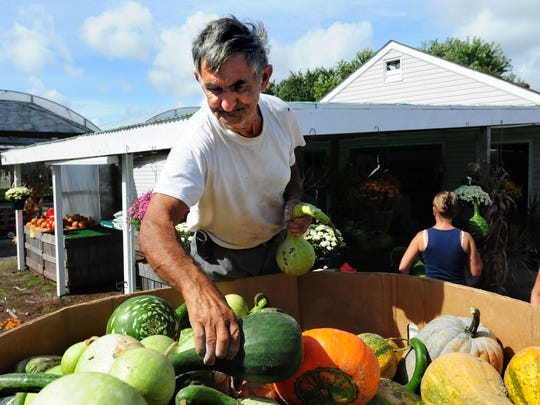 "Norman Webb of Showell, also as the ""Boardwalk Elvis"", helps unload gourds at The Gazebo flower and produce store in Berlin on Sept. 22, 2009."