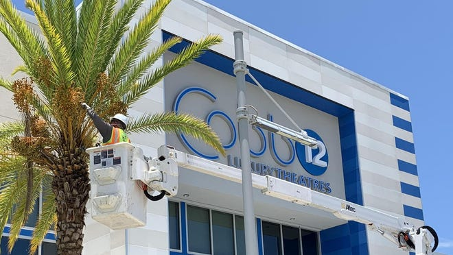 A worker trims one of the palm trees in front of the temporarily closed Cobb Daytona Luxury Theatres movie complex at the One Daytona entertainment/retail center in Daytona Beach on Tuesday, June 16, 2020. Cobbs owners announced plans to reopen the 12-screen movie theater but have yet to say when. It has been closed since mid-March.