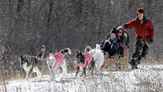 A team of sled dogs move a sled at the Wade House on Feb. 28, 2015, in Greenbush.