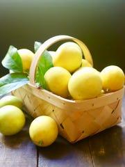 A basket of Meyer lemons.
