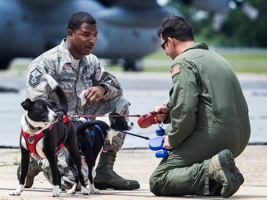 Mst. Sgt. Jason Culbreath (left) talks with Mst. Sgt. Matthew Benko (right)  and Benko's dogs Oscar and Izzy during family day activities following a homecoming ceremony for guard members at the Delaware Air National Guard base in New Castle on Sunday morning.