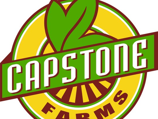 Henry County steers at Capstone Farm graze on organic