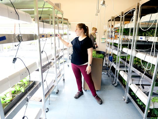 Kim Mansfield is one of the professionals who works with Union-Edicott's Tiger Ventures, a high school combines academic classes with working closely with start-up business professionals. Mansfield is a biological who launched a hydroponic agriculture business in Tiger Ventures.