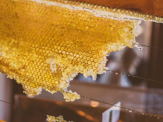 Honeycomb on a beekeeping frame. Ent_Tune cooking classes