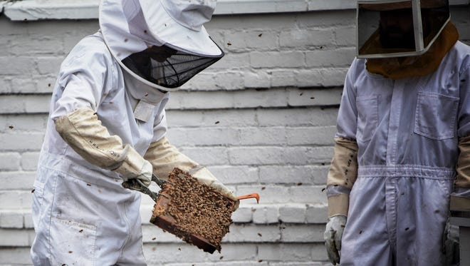 Brian Peterson and John-Paul Jerome work with the bees on the roof of the Detroit City Distillery in Detroit on Wednesday, July 19, 2017.