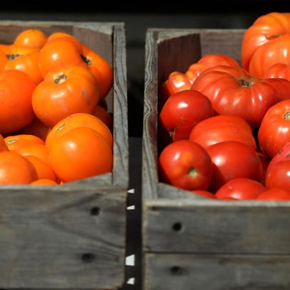 Tomatoes for sale at the Richmond Farmers Market in