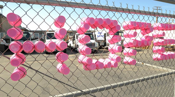 Kaweah Delta: Paint the Town Pink!