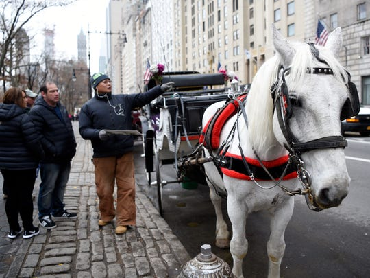 A handler gives directions as his horse stands along 59th Street.