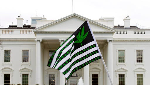 FILE - In this April 2, 2016 file photo, a demonstrator waves a flag with marijuana leaves on it during a protest calling for the legalization of marijuana, outside of the White House in Washington. Six states that allow marijuana use have legal tests for driving while impaired by the drug that have no scientific basis, according to a study by the nation's largest automobile club that calls for scrapping those laws.