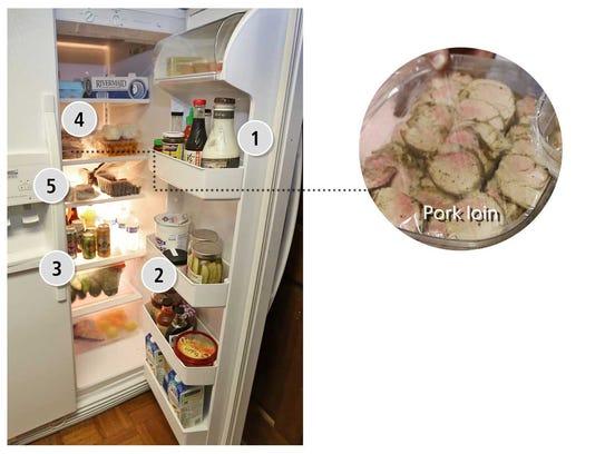 Ed Sahm's refrigerator